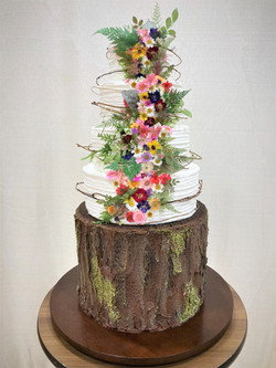 A nature inspired cake with grapevine wr
