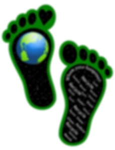Earth-Footprints.webp