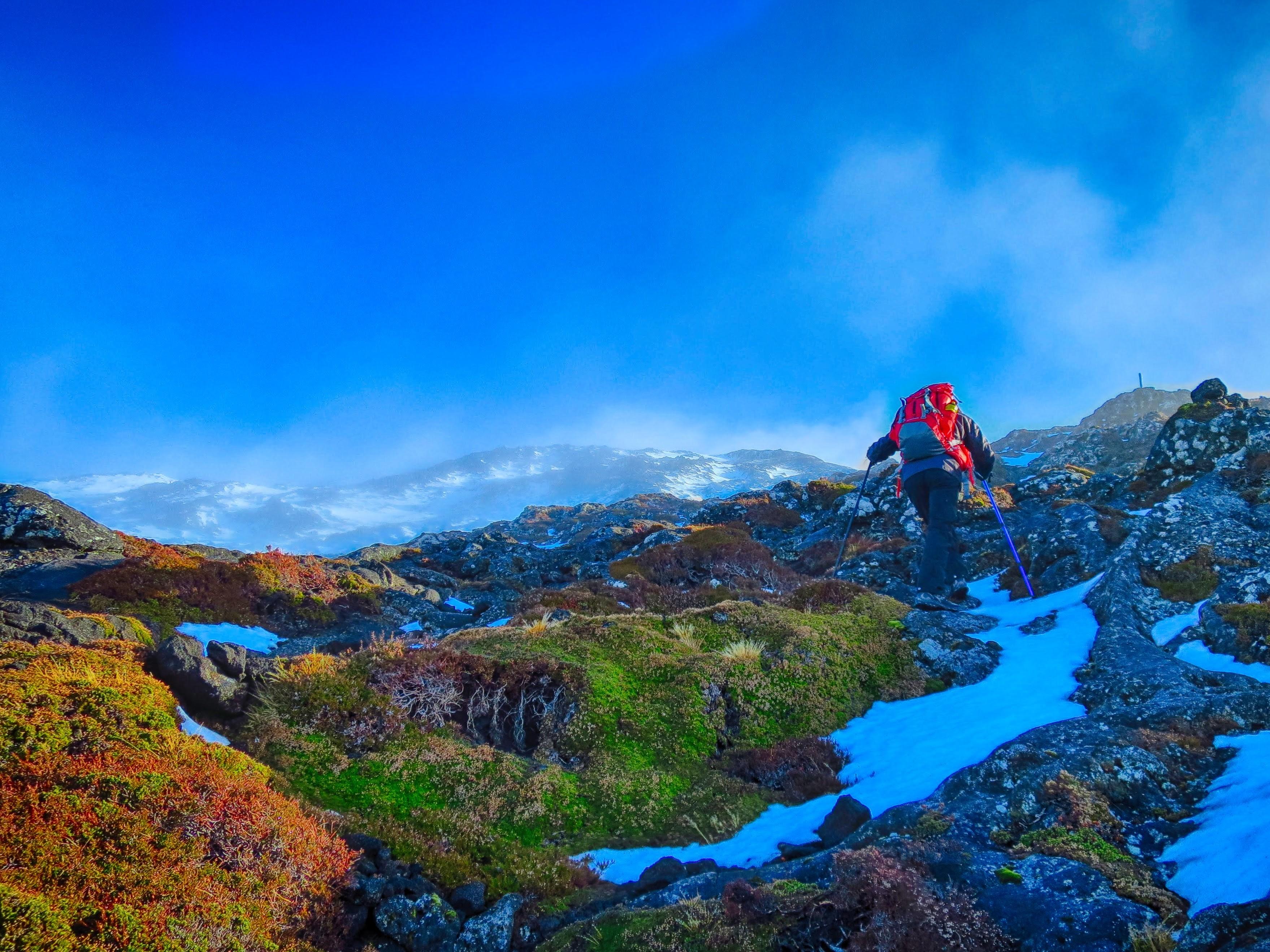 Pico com Neve