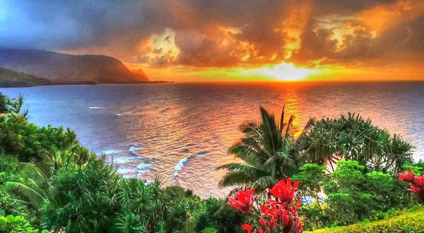 9a80a31953b892dc6b3f9022fa295eec--hawaii