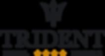 Trident-logo-black (4).png
