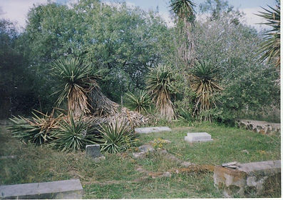 Polley Cemetery Before Restoration 2003