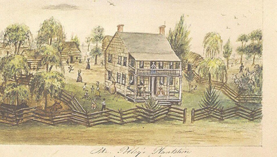 Mr. Polley's Plantation
