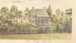 Mr. Polley's Plantation