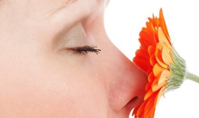 Questione di naso