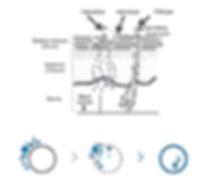 mesoterapia meso lab system