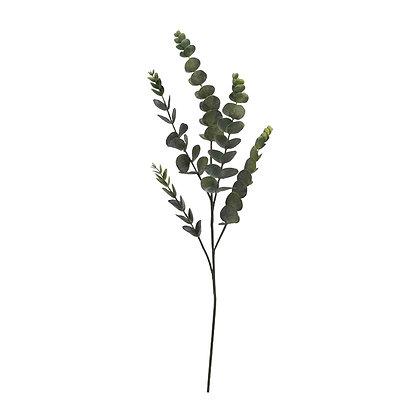 Eukalyptus Zweig - 80 cm