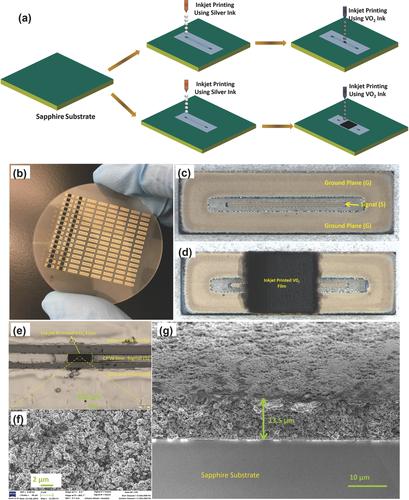 a)インクジェット印刷概略図。b)サファイアウエハ上に製造された直列およびシャントスイッチの画像。c)シャントスイッチ用のインクジェット印刷されたCPW構造、およびd)印刷されたCPW構造の上にあるインクジェット印刷されたVO2フィルムの顕微鏡画像。e)VO2フィルムの顕微鏡像。f)VO2フィルムの拡大SEM表面画像。g)VO2フィルムのSEM断面図 (Advanced Materials Technologies HPより)