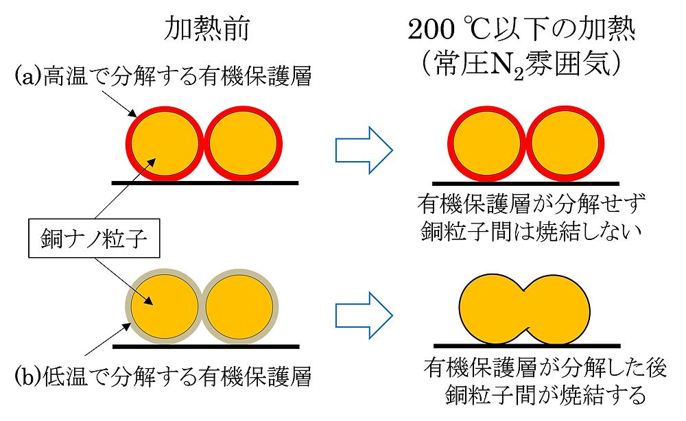 新規開発した銅ナノ粒子(東北大学HPより)