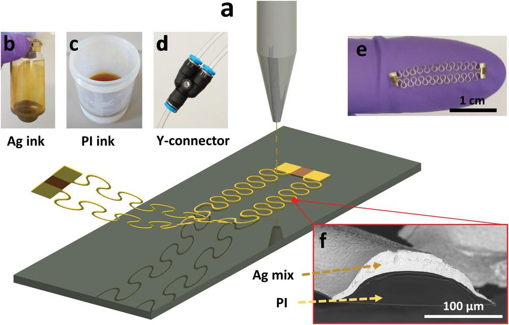 a)エアロゾルジェット印刷された自立伸縮性導線の製造プロセスの概略図。b)超音波霧化用のガラスバイアルに入った銀ナノ粒子インク。c)空気噴霧用のプラスチック瓶に入れられたポリイミドインク。d)2つの異なる霧化方法から生成されたインクエアロゾルの現場混合を可能にするYコネクタ。e)基板から剥離した導線パターンの写真。f)導線の断面を示すSEM画像。(Advanced Materials Technologies HPより)