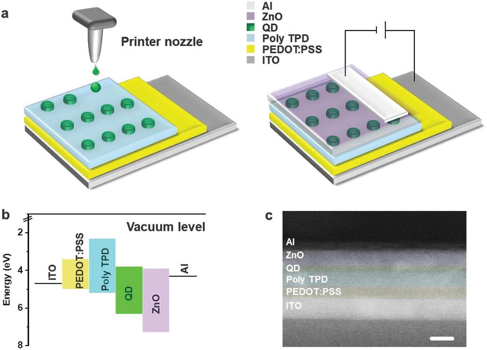 QLEDピクセルのインクジェット印刷。a)インクジェット印刷されたピクセルを含むデバイス全体の概略スタック。b)エネルギーレベル図。c)スタックの断面走査型電子顕微鏡写真(スケールバー:100 nm)。(Advanced Optical Materials HPより)