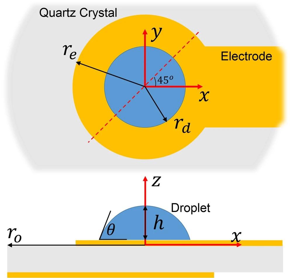 付着した液滴を中央に配置したQCMの断面図と上面図(Scientific Report HPより)