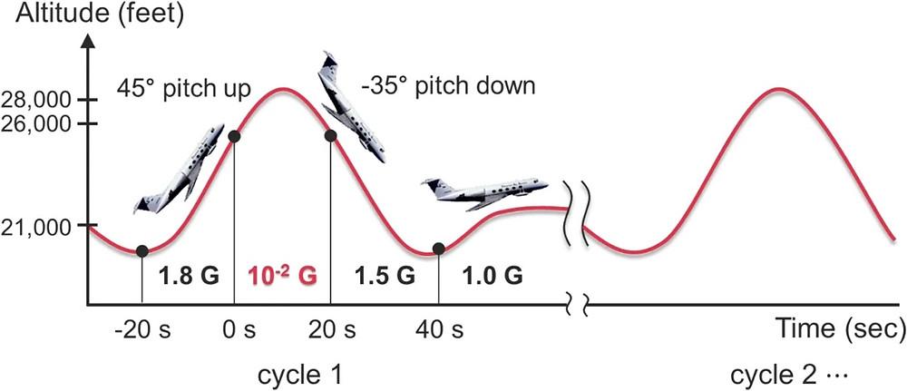 低重力環境下における音響操作概略図(Scientific Report HPより)
