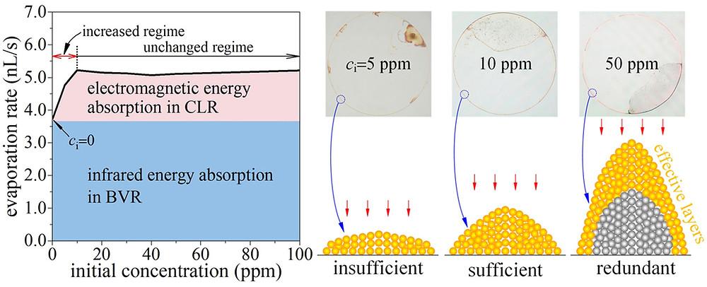 蒸発過程の太陽光吸収概略図(Science Direct HPより)