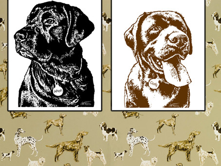 Labrador Portraits in Black and Gold