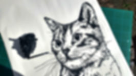 A cat portrait in progress by pet artist Gary Faulkner.