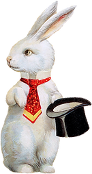 white rabbit klein.png