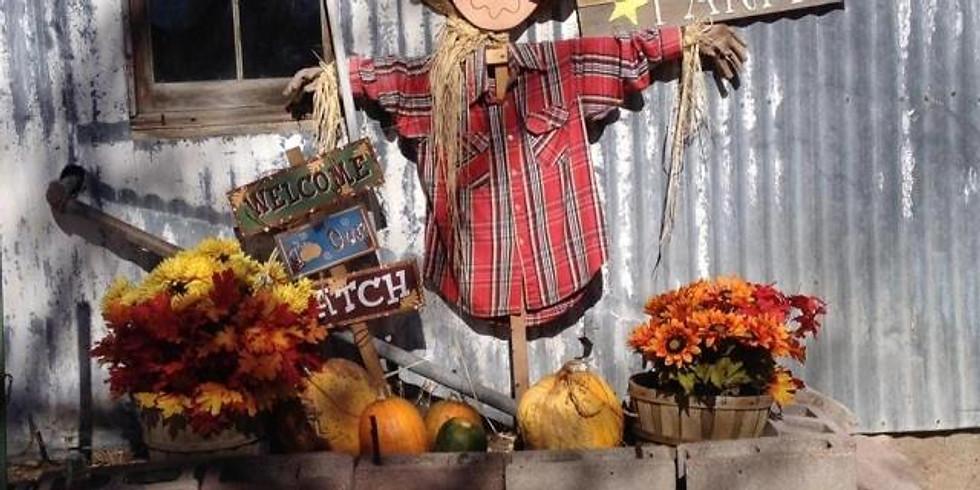 Pumpkin Patch Fun!!