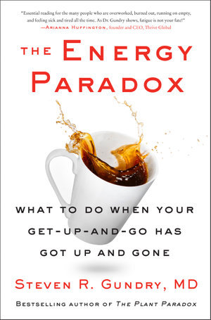 The Energy Paradox by Steven Gundry