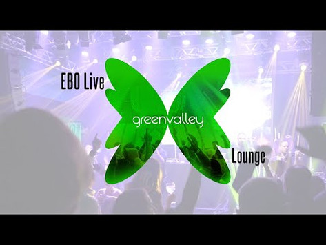 Electro Beat Orchestra no Green Valley