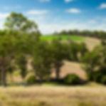 Potatoe Panorama.jpg
