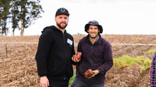 CHEFS ENCOURAGED TO MAKE AN EMOTIONAL CONNECTION WITH SOUTHERN FORESTS FOOD