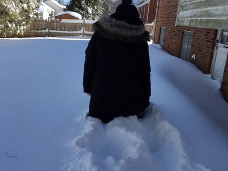 記録的大雪 vol.2