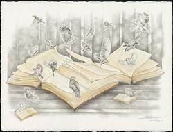 Bird Books web