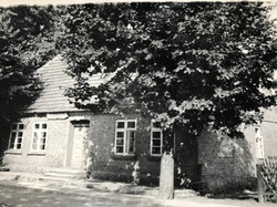 Haus mit Linden