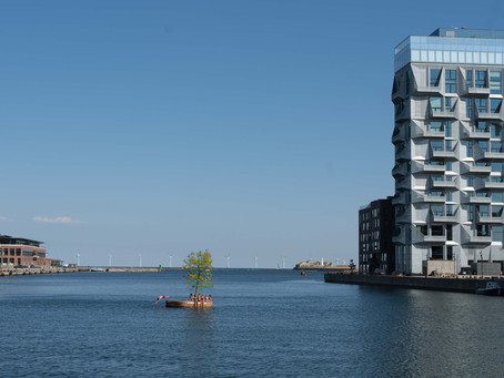 Europe's most sustainable islands are Danish