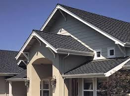 Roof Gris  (1).jpeg
