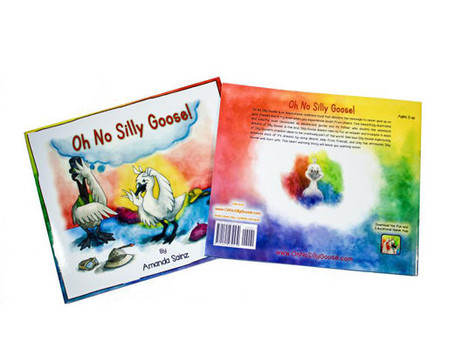 Oh No Silly Goose - A book with the message you can be whatever you want to be.