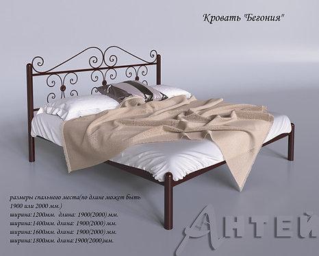 """Кровать металлическая """"Бегония"""""""