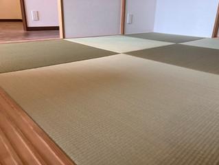 「琉球風畳」の表替え 熊本産