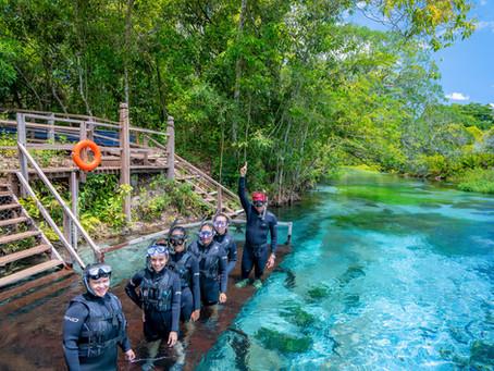 Rio Sucuri lança vídeo sobre técnicas de mergulho para familiarizar visitantes com o passeio