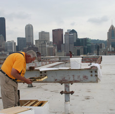 Beekeeper Jim Fitzroy manages hives on downtown Pittsburgh rooftops