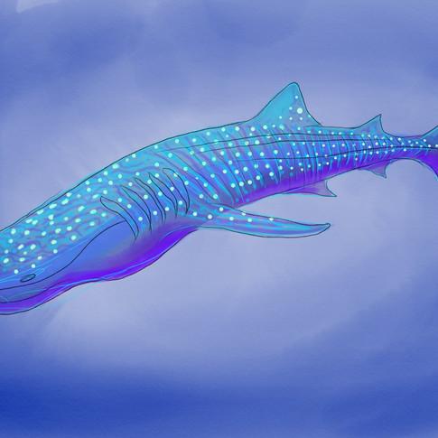 Whale Shark Puppet