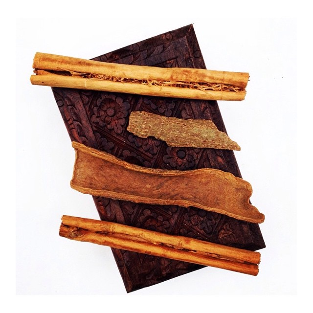 Instagram - •CINNAMON• is a sacred plant to Dionysus, the Greek god of ecstasy-