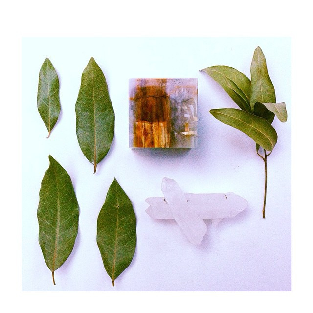 Instagram - True BAY LEAVES come from the Bay Laurel.jpg
