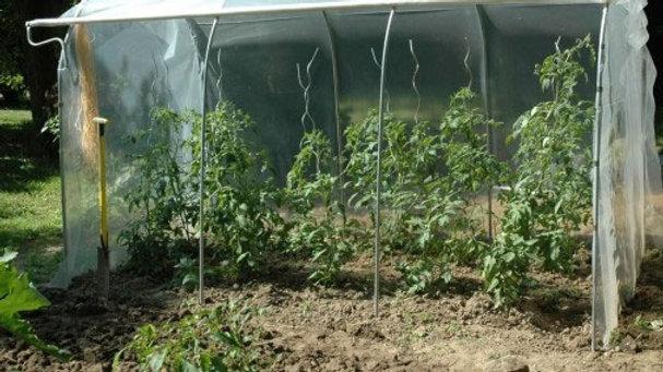 Couloir à tomates - largeur 1,30m - ø 25