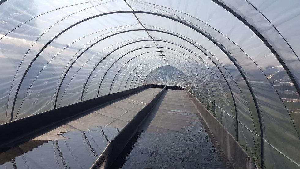 """Tunnel """"Rapide"""" plein champ - largeur 4,50m - ø 30 - fermeture chignon"""