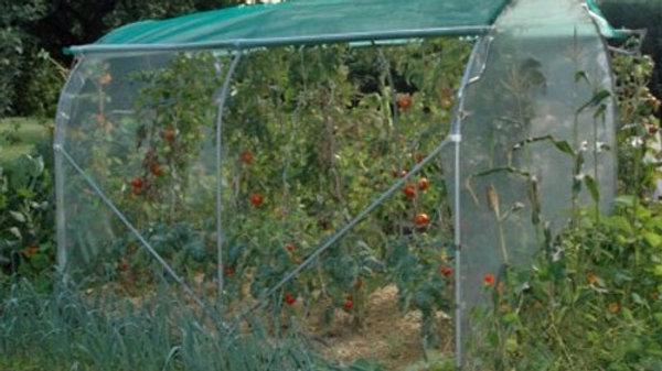 Couloir à tomates - largeur 2,40m - ø 30 - aération latérale