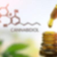 CBD Cannabidiol in pipette against Hemp plant with chemical molecule_edited_edited.jpg