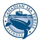 Canadian Sea Turtle Network.jpg