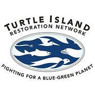 turtle island restoration network.jpg