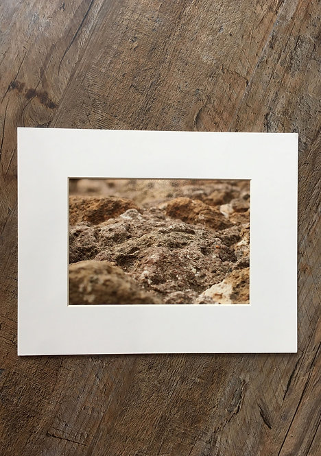 "8""x10"" Matted Print by Photographer Catherine Pezo"