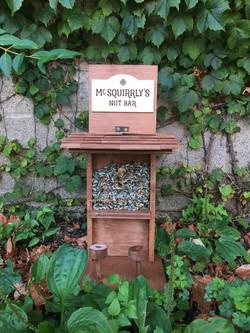 Squirrel Bar
