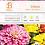 Thumbnail: Zinnia - Seed Packet