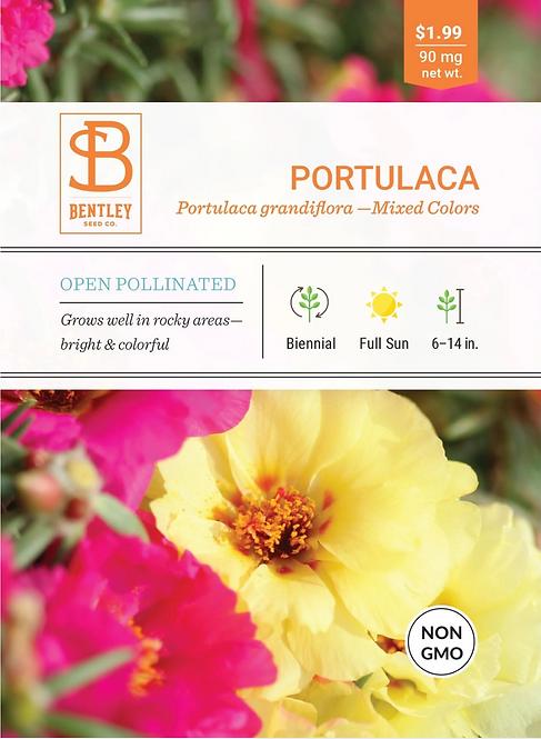 Portulaca - Seed Packet