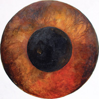 Web Cosmic'Eye NGC 0509, 50x50 cm, Oil o